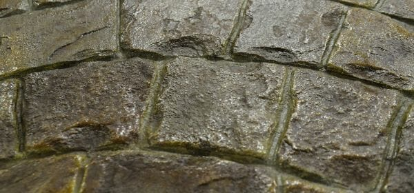 roman-fan-stamped-concrete-example-close-up-1