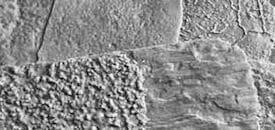 Vertical Concrete Texture Skins